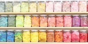 染色体験 1.色を選ぶ